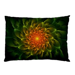 Beautiful Orange Green Desert Cactus Fractalspiral Pillow Case (two Sides) by jayaprime