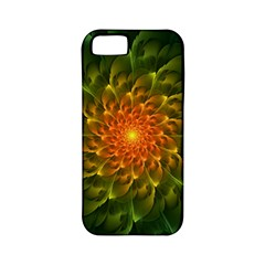 Beautiful Orange Green Desert Cactus Fractalspiral Apple Iphone 5 Classic Hardshell Case (pc+silicone) by jayaprime