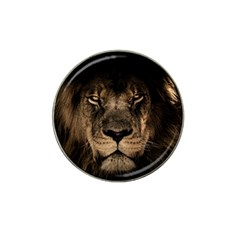 African Lion Mane Close Eyes Hat Clip Ball Marker