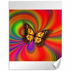 Arrangement Butterfly Aesthetics Canvas 12  X 16