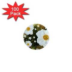 Summer Anemone Sylvestris 1  Mini Magnets (100 Pack)  by Celenk
