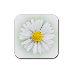 Art Daisy Flower Art Flower Deco Rubber Coaster (square)  by Celenk