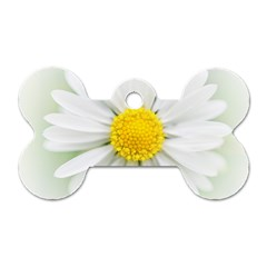 Art Daisy Flower Art Flower Deco Dog Tag Bone (two Sides) by Celenk