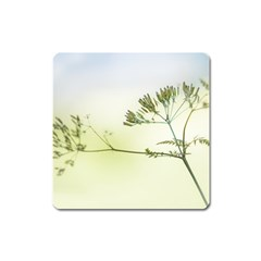 Spring Plant Nature Blue Green Square Magnet by Celenk
