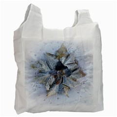 Winter Frost Ice Sheet Leaves Recycle Bag (one Side)