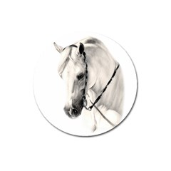 White Horse Magnet 3  (round) by animalpaintings