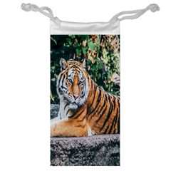 Animal Big Cat Safari Tiger Jewelry Bag by Celenk