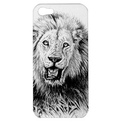 Lion Wildlife Art And Illustration Pencil Apple Iphone 5 Hardshell Case by Celenk