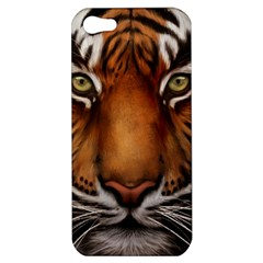 The Tiger Face Apple Iphone 5 Hardshell Case by Celenk