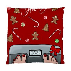 Hilarious Holidays  Standard Cushion Case (two Sides) by Valentinaart