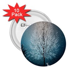 Winter Wintry Snow Snow Landscape 2 25  Buttons (10 Pack)  by Celenk