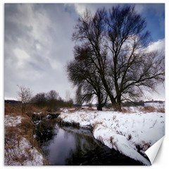 Winter Bach Wintry Snow Water Canvas 20  X 20   by Celenk