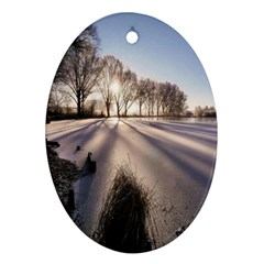 Winter Lake Cold Wintry Frozen Ornament (oval) by Celenk