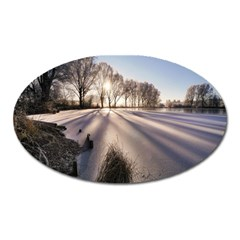 Winter Lake Cold Wintry Frozen Oval Magnet by Celenk