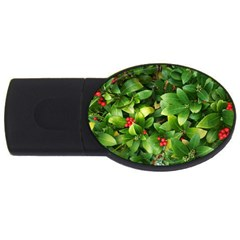 Christmas Season Floral Green Red Skimmia Flower Usb Flash Drive Oval (4 Gb) by yoursparklingshop