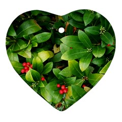 Christmas Season Floral Green Red Skimmia Flower Heart Ornament (two Sides) by yoursparklingshop