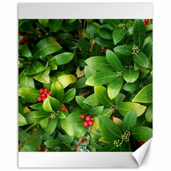 Christmas Season Floral Green Red Skimmia Flower Canvas 16  X 20   by yoursparklingshop