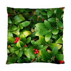 Christmas Season Floral Green Red Skimmia Flower Standard Cushion Case (two Sides) by yoursparklingshop