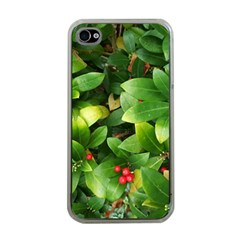 Christmas Season Floral Green Red Skimmia Flower Apple Iphone 4 Case (clear) by yoursparklingshop
