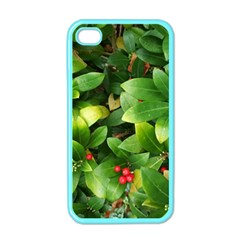 Christmas Season Floral Green Red Skimmia Flower Apple Iphone 4 Case (color) by yoursparklingshop