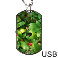 Christmas Season Floral Green Red Skimmia Flower Dog Tag Usb Flash (two Sides) by yoursparklingshop