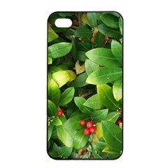 Christmas Season Floral Green Red Skimmia Flower Apple Iphone 4/4s Seamless Case (black) by yoursparklingshop