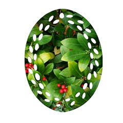 Christmas Season Floral Green Red Skimmia Flower Oval Filigree Ornament (two Sides) by yoursparklingshop