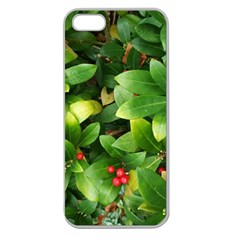 Christmas Season Floral Green Red Skimmia Flower Apple Seamless Iphone 5 Case (clear) by yoursparklingshop