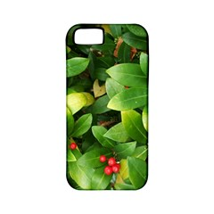 Christmas Season Floral Green Red Skimmia Flower Apple Iphone 5 Classic Hardshell Case (pc+silicone) by yoursparklingshop