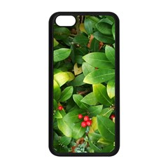 Christmas Season Floral Green Red Skimmia Flower Apple Iphone 5c Seamless Case (black) by yoursparklingshop