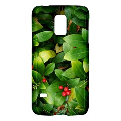 Christmas Season Floral Green Red Skimmia Flower Galaxy S5 Mini by yoursparklingshop