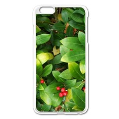 Christmas Season Floral Green Red Skimmia Flower Apple Iphone 6 Plus/6s Plus Enamel White Case by yoursparklingshop