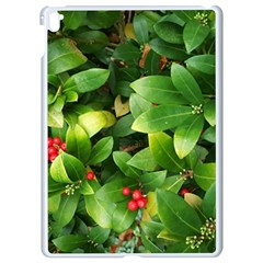 Christmas Season Floral Green Red Skimmia Flower Apple Ipad Pro 9 7   White Seamless Case by yoursparklingshop