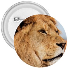 Big Male Lion Looking Right 3  Buttons by Ucco