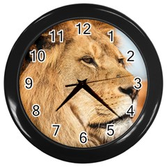 Big Male Lion Looking Right Wall Clocks (black) by Ucco