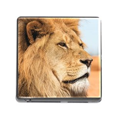 Big Male Lion Looking Right Memory Card Reader (square) by Ucco