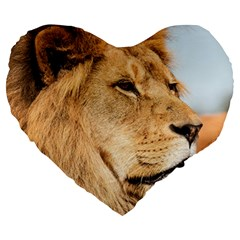 Big Male Lion Looking Right Large 19  Premium Heart Shape Cushions by Ucco