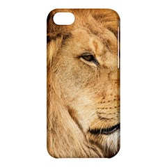 Big Male Lion Looking Right Apple Iphone 5c Hardshell Case