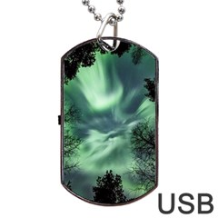 Northern Lights In The Forest Dog Tag Usb Flash (one Side) by Ucco