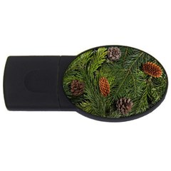 Branch Christmas Cone Evergreen Usb Flash Drive Oval (4 Gb) by Celenk