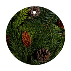 Branch Christmas Cone Evergreen Round Ornament (two Sides) by Celenk