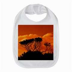 Trees Branches Sunset Sky Clouds Amazon Fire Phone by Celenk
