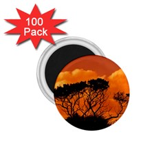 Trees Branches Sunset Sky Clouds 1 75  Magnets (100 Pack)  by Celenk
