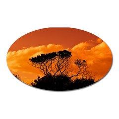 Trees Branches Sunset Sky Clouds Oval Magnet by Celenk