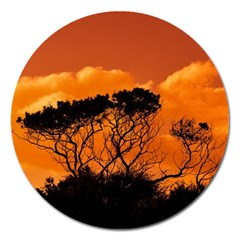 Trees Branches Sunset Sky Clouds Magnet 5  (round) by Celenk