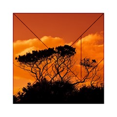 Trees Branches Sunset Sky Clouds Acrylic Tangram Puzzle (6  X 6 ) by Celenk