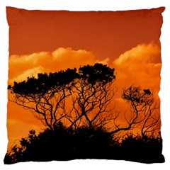 Trees Branches Sunset Sky Clouds Standard Flano Cushion Case (one Side)