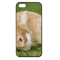 Beautiful Blue Eyed Bunny On Green Grass Apple Iphone 5 Seamless Case (black) by Ucco