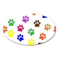 Pawprints Paw Prints Paw Animal Oval Magnet by Celenk