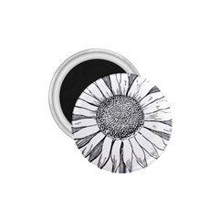 Sunflower Flower Line Art Summer 1 75  Magnets by Celenk
